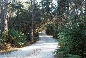 Old Salt Works Cabins, Cape San Blas, FL. We Used To Stay At