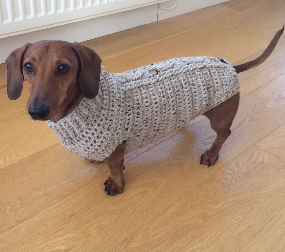 Cosy Aran Snazzy Sausage Dog Jumpers Dachshund Love Dog