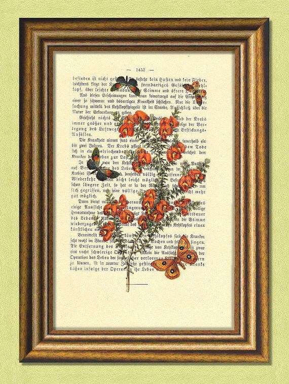 ORCHID Lady Slipper & BUTTERFLIES  Dictionary art print by littlevintagechest, $7.99