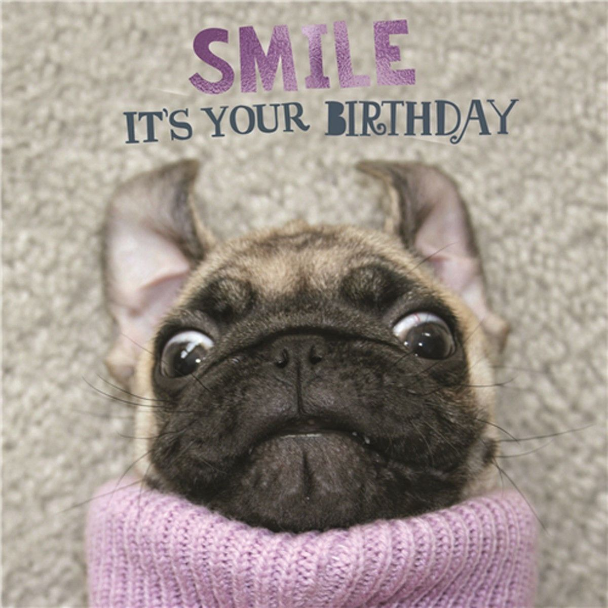 Funny Pug Birthday Card Available At Ilovepugscouk Post Worldwide