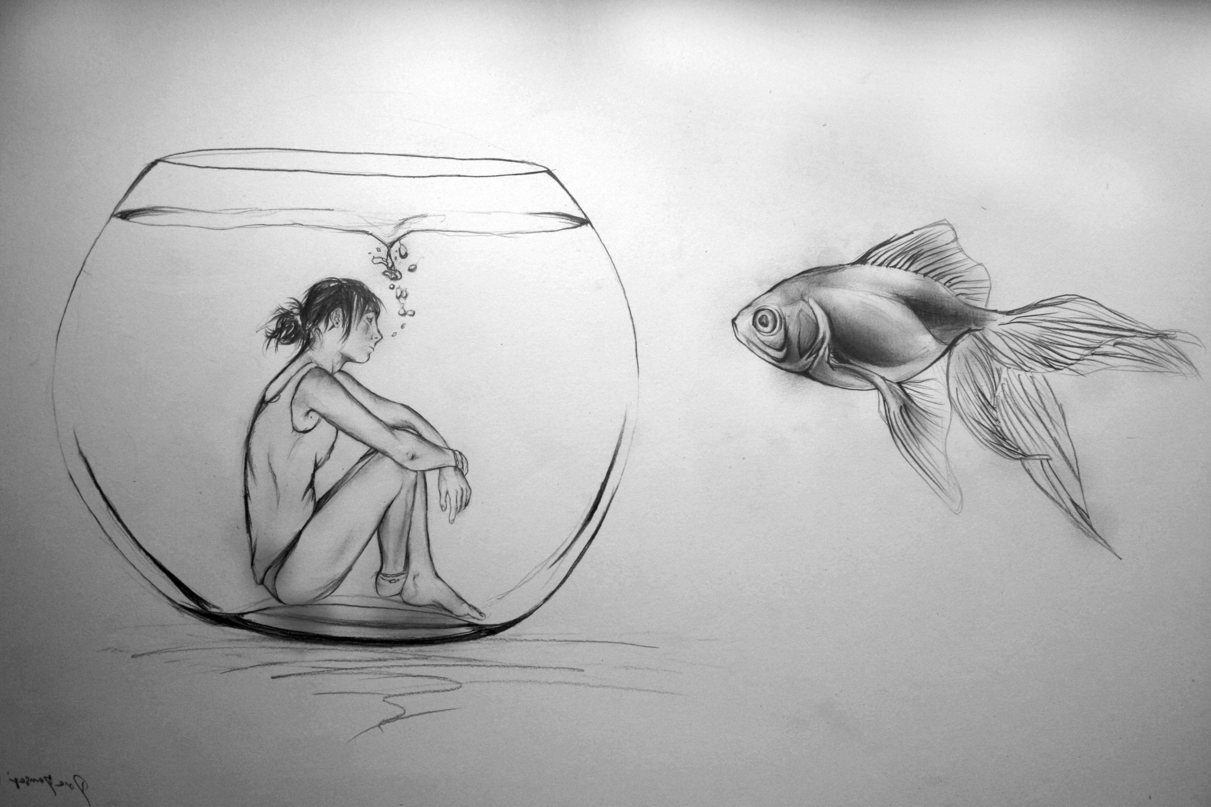 Pencil sketches simple drawing sketch