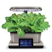 Pro 2584522 Aerogarden Mixed Romaine Lettuce Seed Pods 400 x 300
