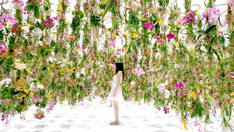 A Suspended Flower Garden That Lifts Out of the Way When a Person Walks Through It