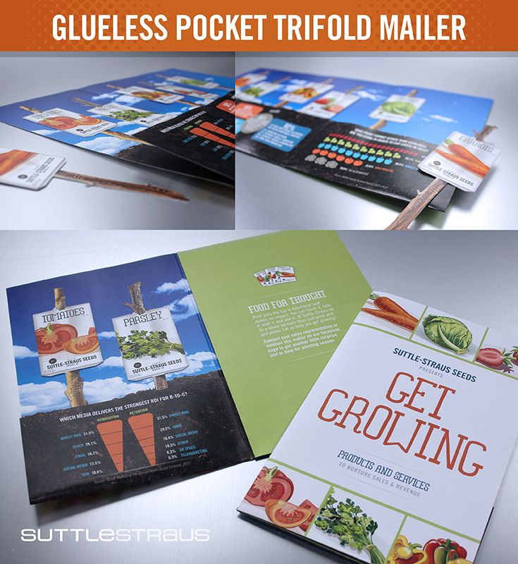 glueless pocket trifold mailer digitally printed mailer with