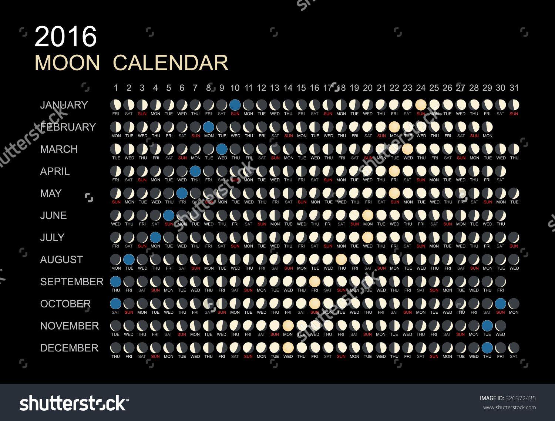 Stock Vector Moon Phases Calendar Vector Illustration