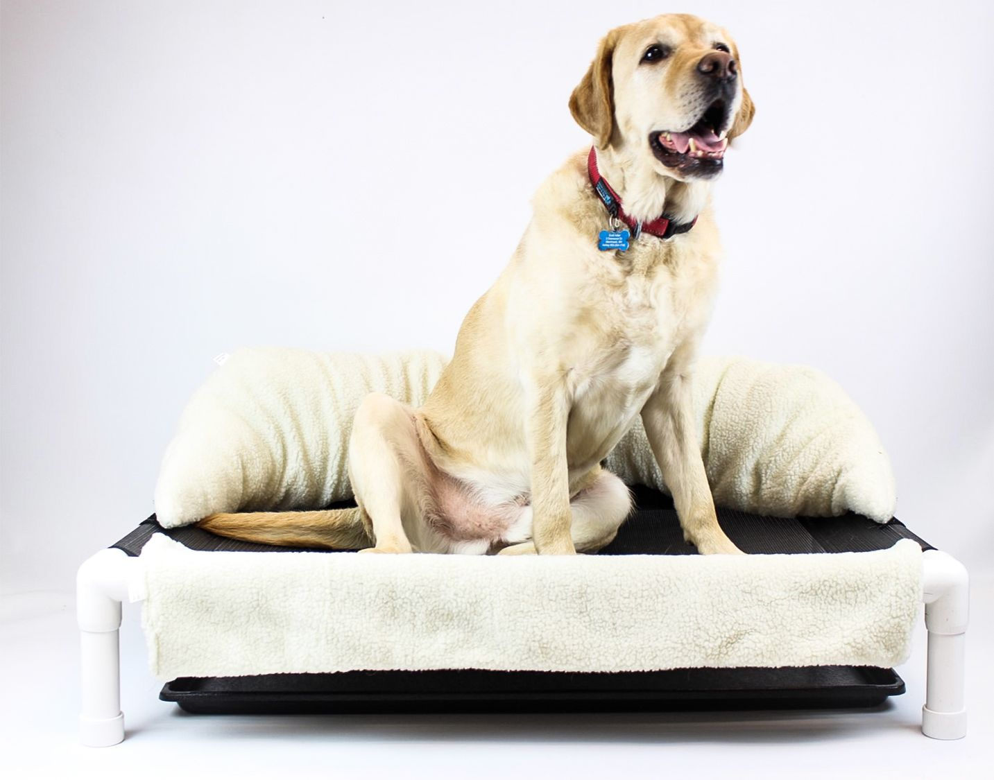 Dog incontinence sleepee time bed mesh dog bed dog