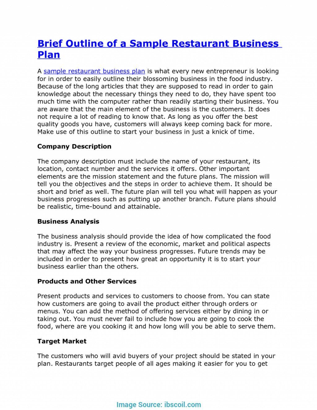 Professional Business Plans Proposal Template Examples