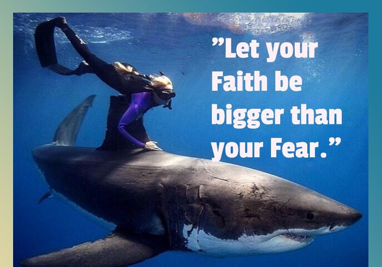 Let Your Faith Be Bigger Than Your Fear Shark Quotes Shark Quotes Sharks Funny Motivational Quotes For Life