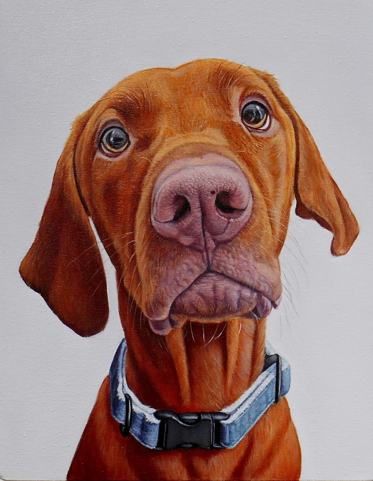 Realistic Funny Dog Portraits Dog portraits, Dog art