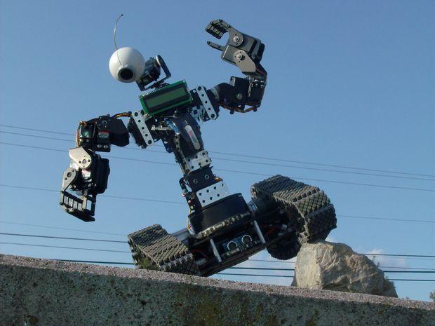RC/Autonomous Human Bot + LEDs & LCD screem