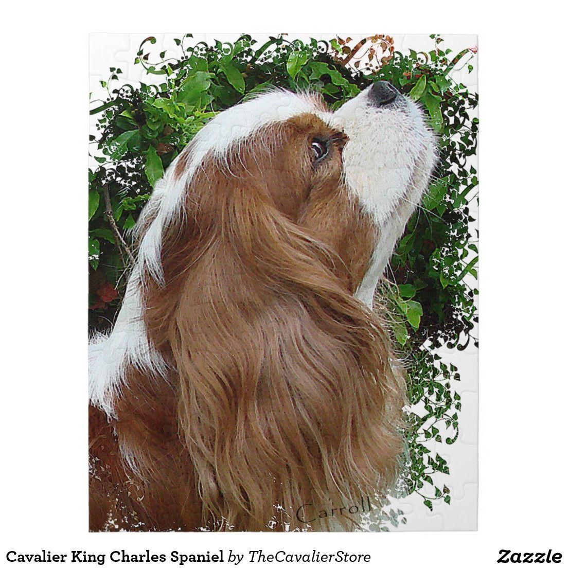 Cavalier King Charles Spaniel Jigsaw Puzzle Zazzle Com King Charles Spaniel Cavalier King Charles Spaniel Cavalier King Charles