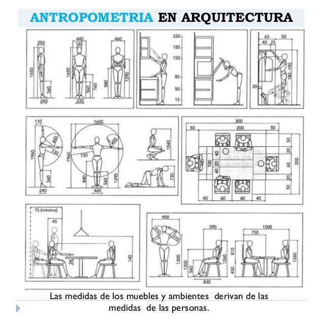 antropometria arquitect nica medidas pinterest