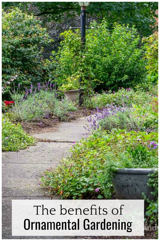 a753450572b34ff99808e42a14041b4f - What Is The Importance Of Urban Gardening