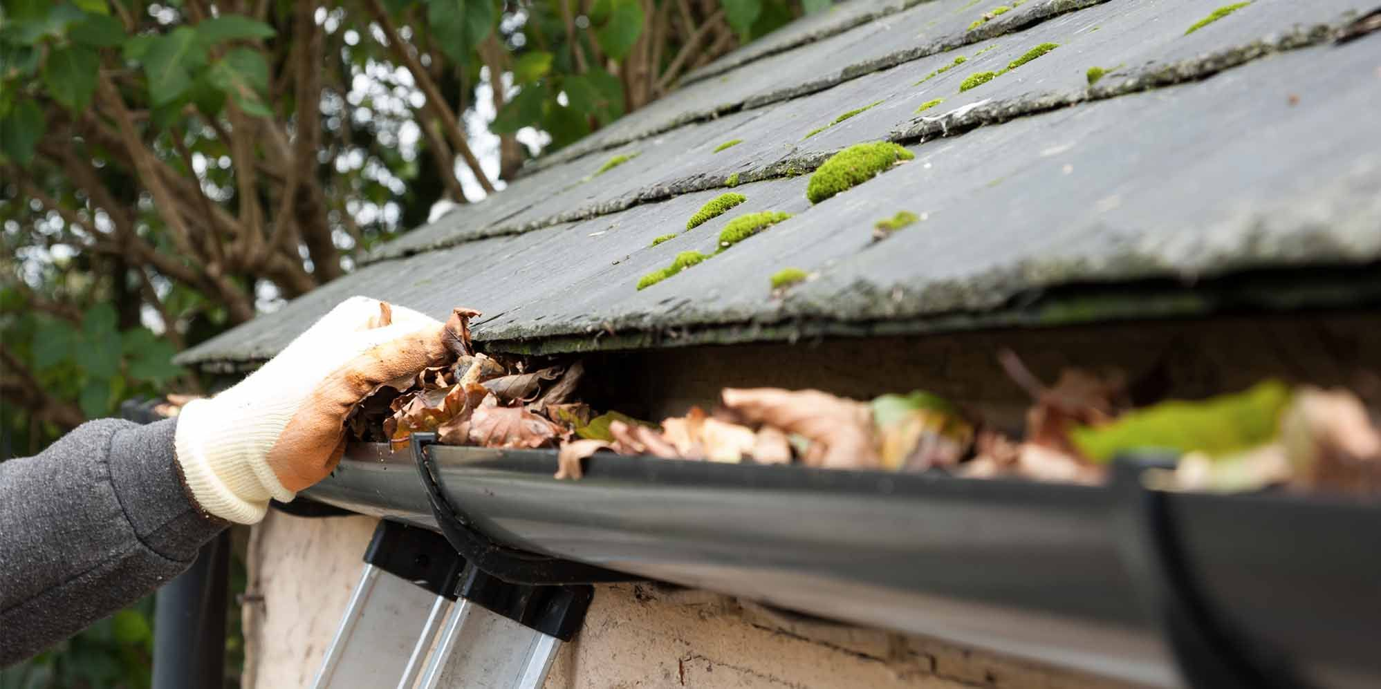 Dumping And Leaking Drains Can Harm Coatings And Foundations Which Can Price Hundreds Of Dollars For Repairs You Can Use Cha Cleaning Gutters Gutter Cleaning
