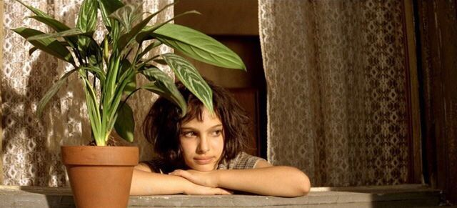 What Kind Of Plant Did Leon And Mathilda Have Gardening Garden Diy Home Flowers The Professional Movie Léon The Professional Leon The Professional Quotes