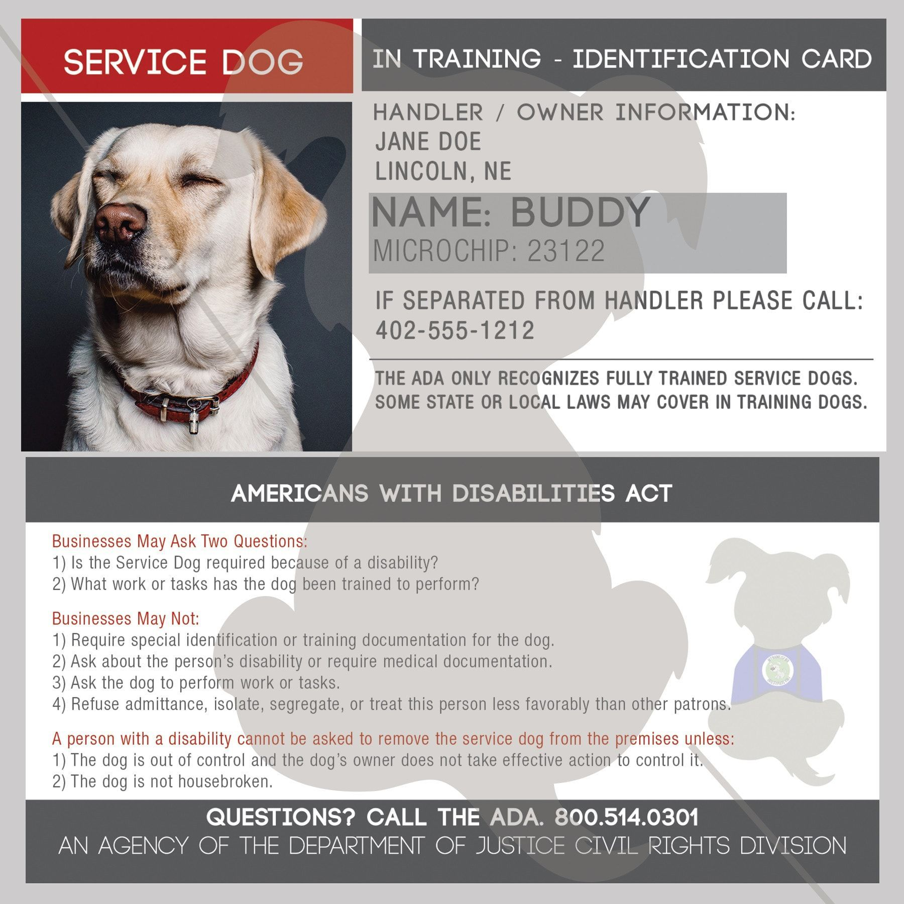 Id Card Service Dog In Training Therapy Dogs Emotional