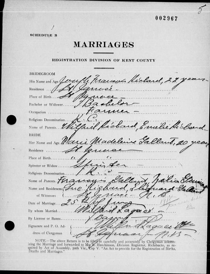 Richard Marriage License Family Tree Pinterest Marriage - copy free fake marriage certificate