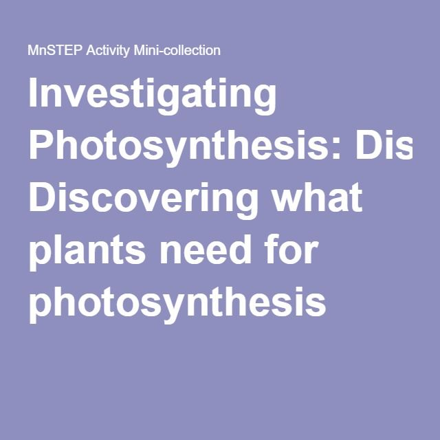 investigating the rate of photosynthesis by What are the effects of light intensity on the rate of photosynthesis and oxygen production in plants science project this science fair project idea focuses on the production of oxygen by plants during the photosynthesis process.