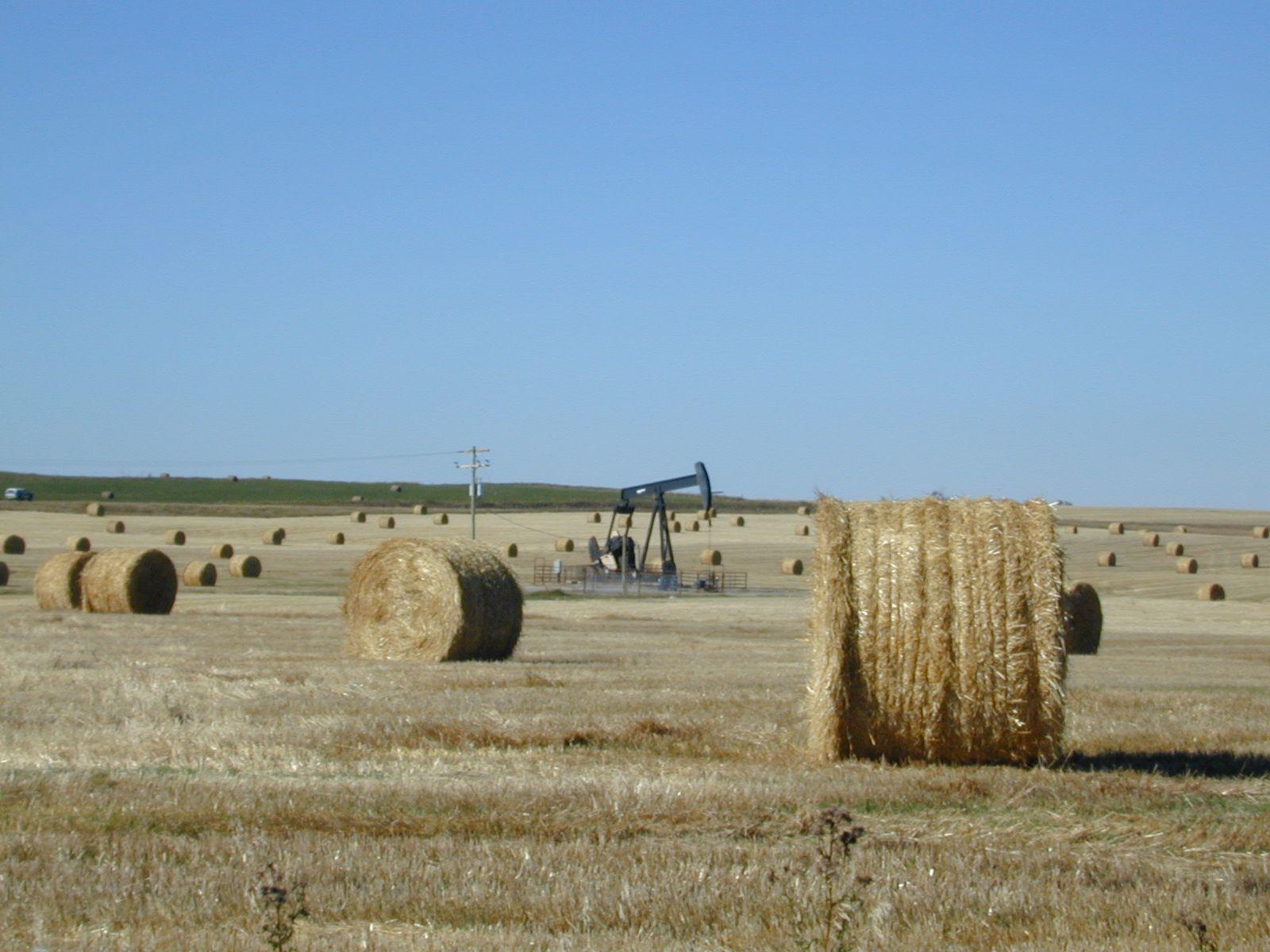 Oil & Agriculture, Alberta, Canada Alberta, Canada, Travel