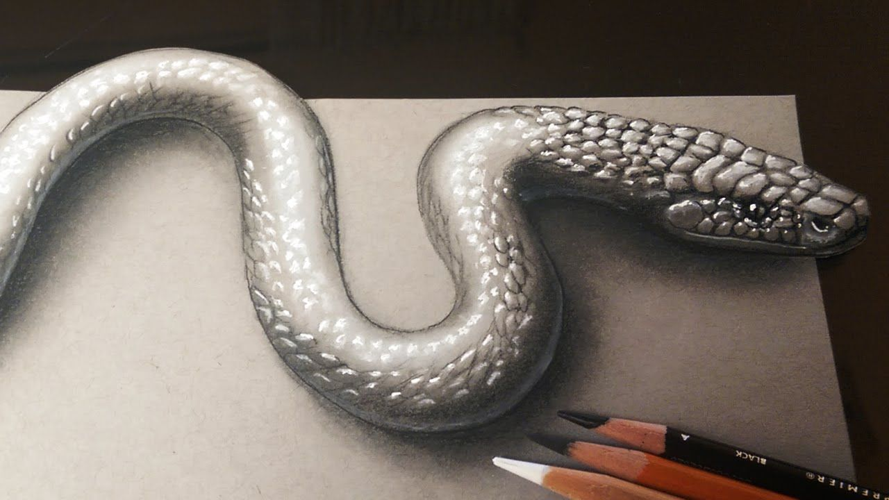 This Is An Easy And Realistic Snake Drawing With 3d Effect Drawn With Black  Charcoal