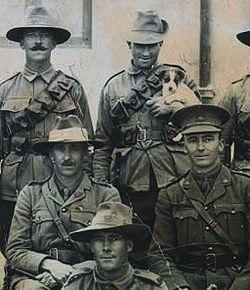 Australian Light Horse in WW1?