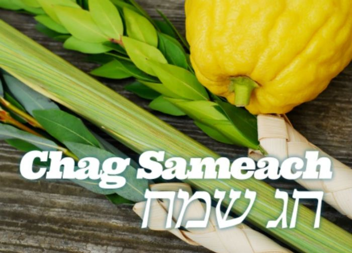 Image result for chag sukkot sameach images | Sukkot, Happy sukkot, Seasonal celebration