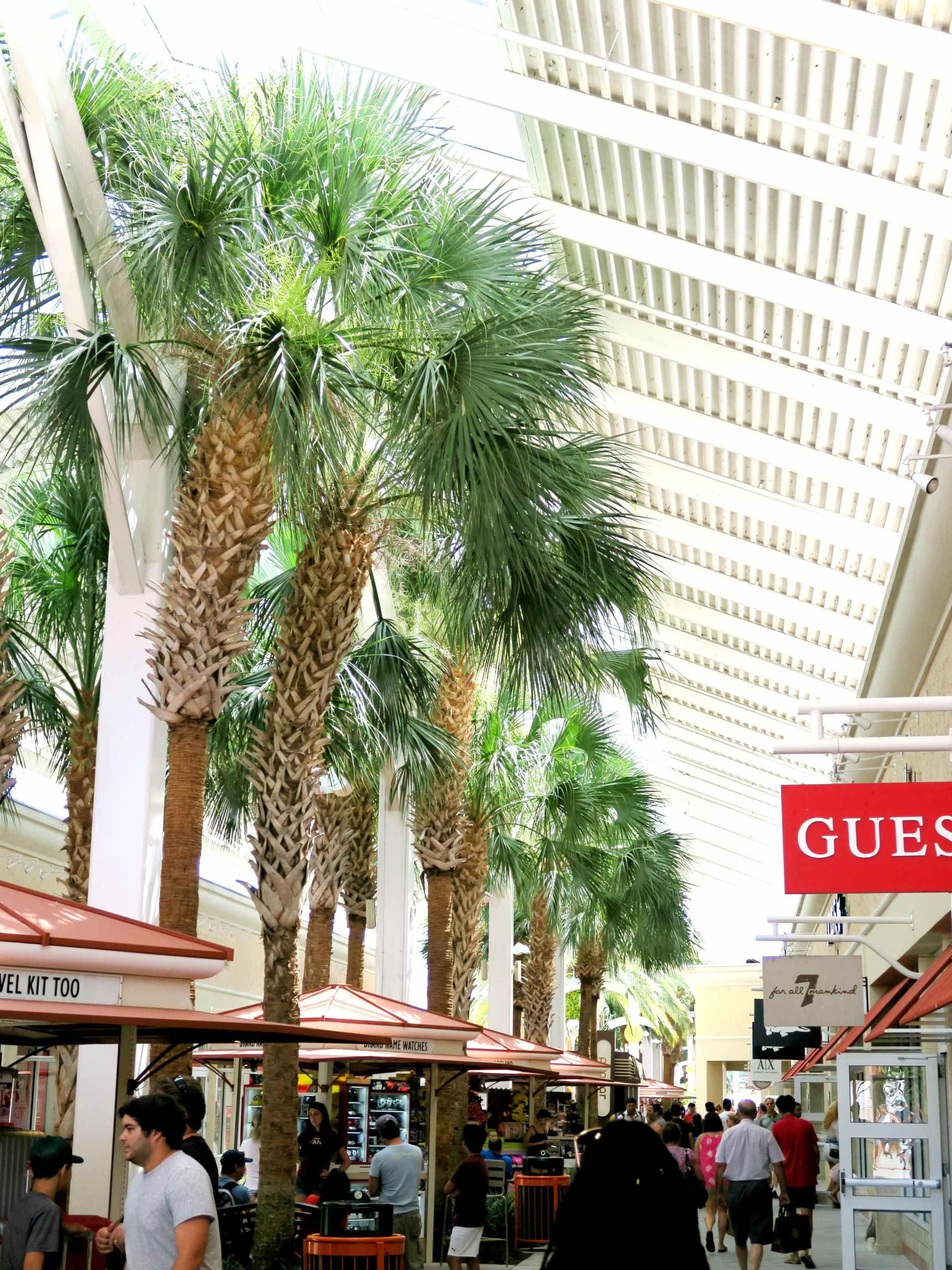 e66d04704cf0 A Day Shopping At Orlando Vineland Premium Outlets