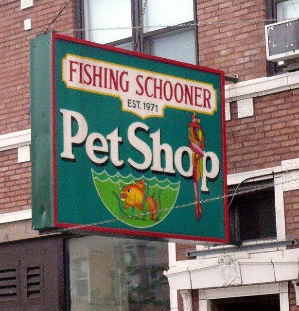Pet Shop Sign Chicago Il Jpg Shop Signs Pet Shop Shop Front Design