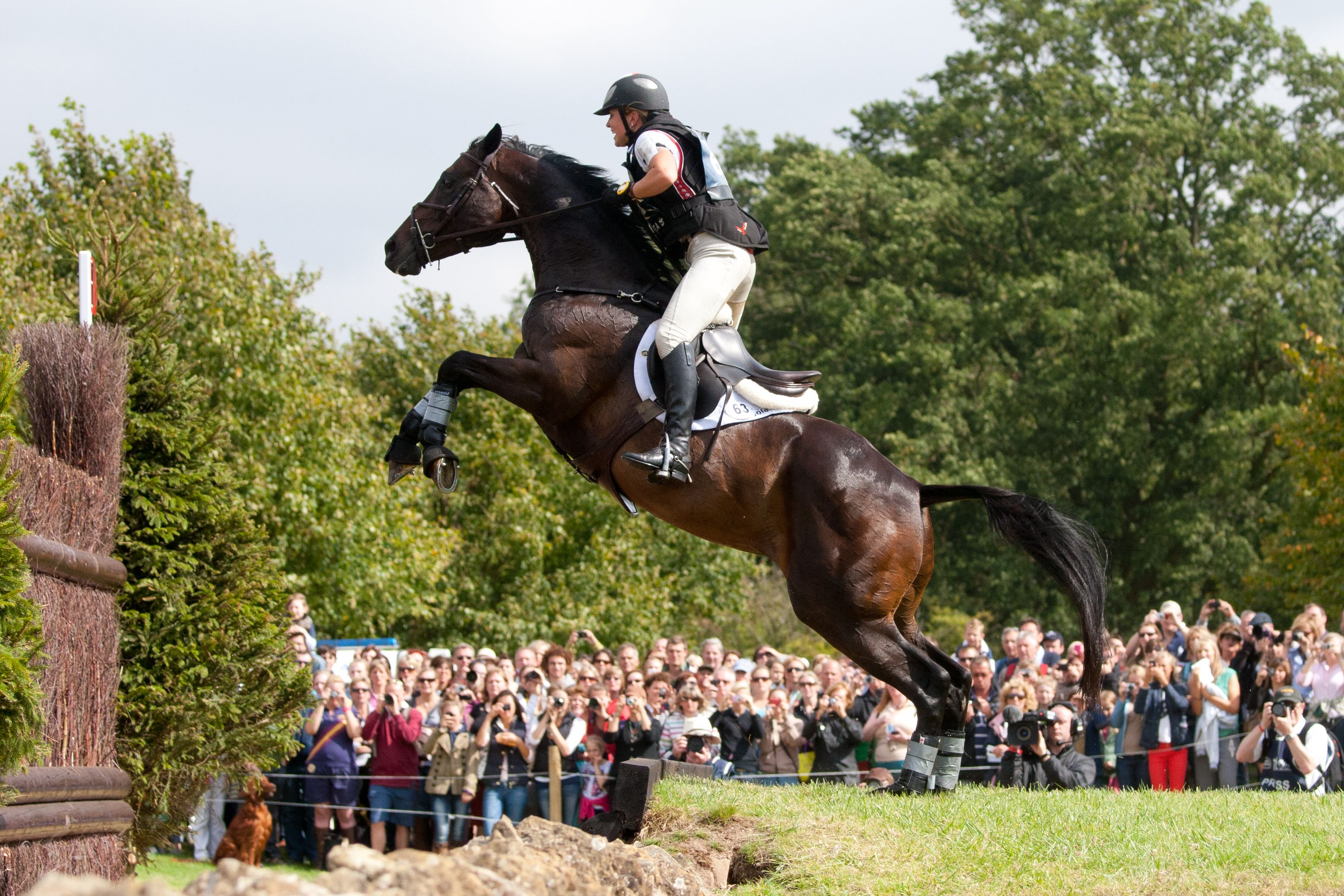 Horses jumping cross country - photo#53