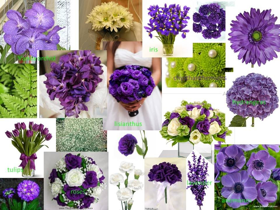Purple And Lime Green Wedding Flowers