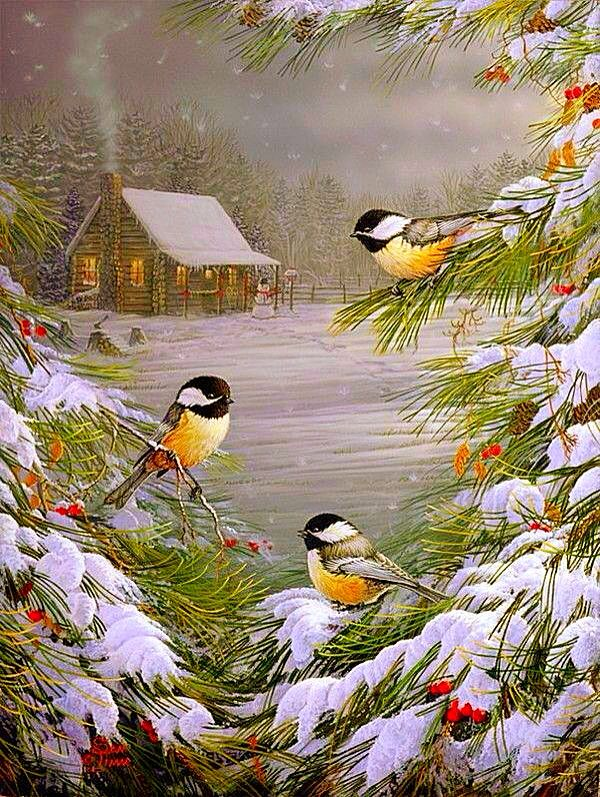 The Birds Come Out . . . The Snow Begins To Thaw ~ Sam Timm.