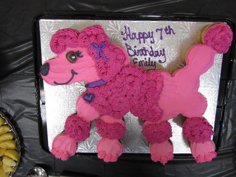Marvelous Food Lion Birthday Cakes Pink Poodle Cake With Images Lion Personalised Birthday Cards Paralily Jamesorg