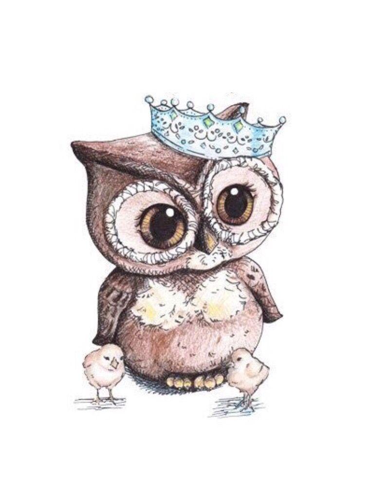 Owl بومة Owls Drawing Owl Art Owl