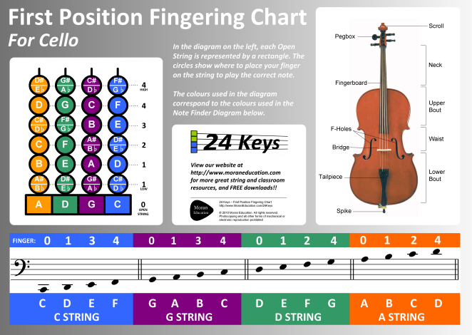 Cello Notes Chart Bing Images