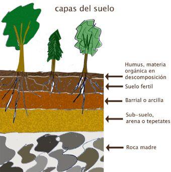Manejo De Agua En El Paisaje Suelos Jardin De Productos Comestibles Capas
