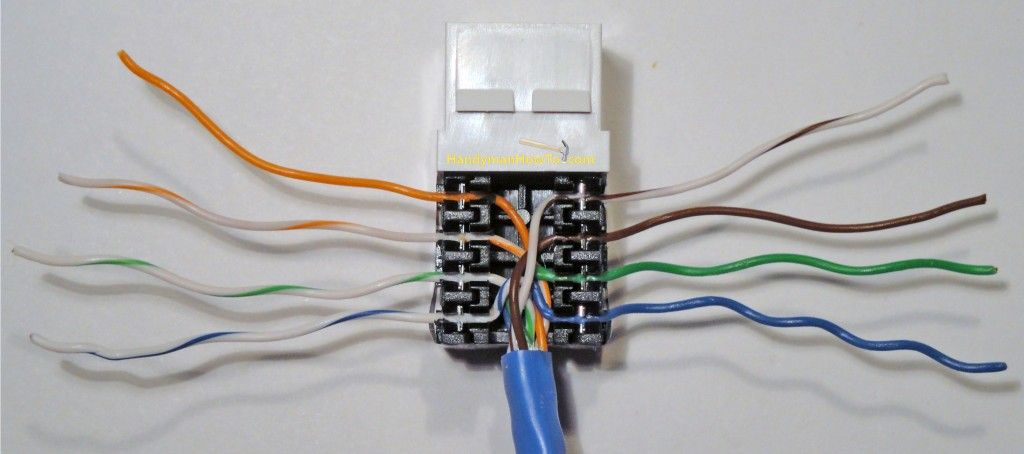 completed cat5e ethernet jack wire punchdown  phone jack
