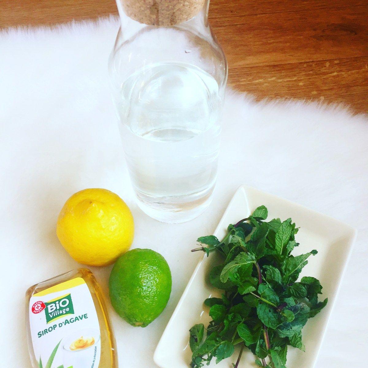 Limonade Sans Sucre 100% Minceur Citron Jaune Citron Vert