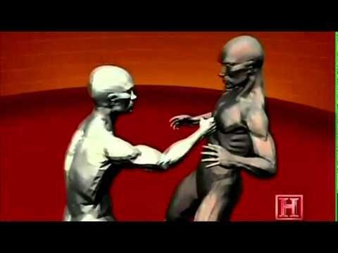 Techniques de défense le Krav-Maga - YouTube