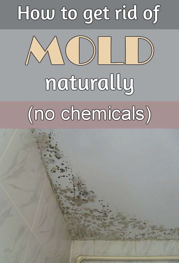 How To Get Rid Of Mold Naturally Without Chemicals - Natural mold remover for bathroom