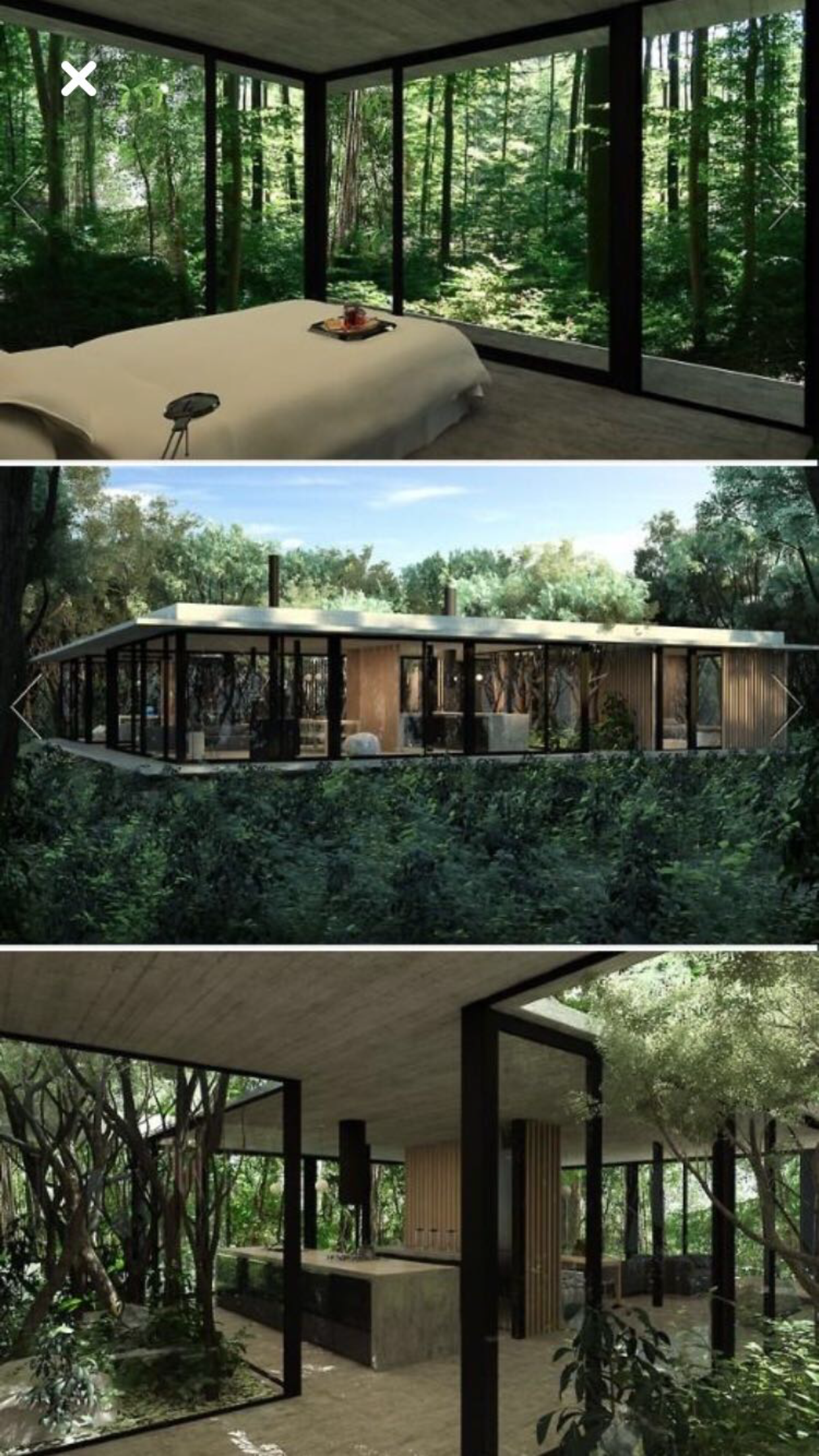 Nicely worked the house around the trees! the planning ... on corner of deck for trees, designs around roses, designs flowers, largest house built in trees, shading a building with trees, designs around windows, chained of fallen trees, designs around mailbox, designs in trees,