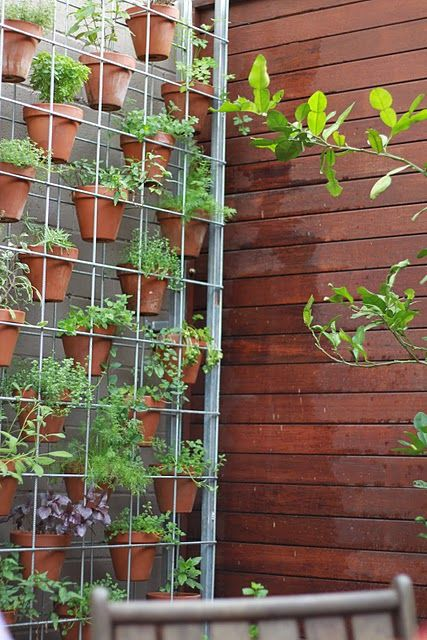 Vertical herb garden, awesome garden of herbs -an idea for my friend who wanted a patio herb garden in easy reach of the kitchen.