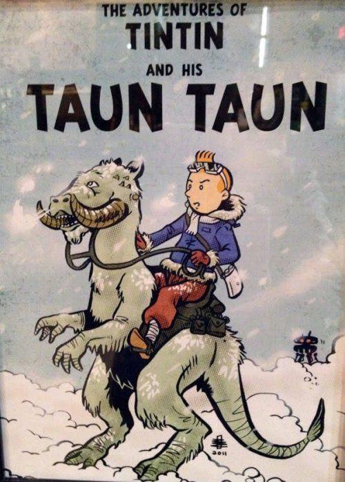 tin tin & taun taun