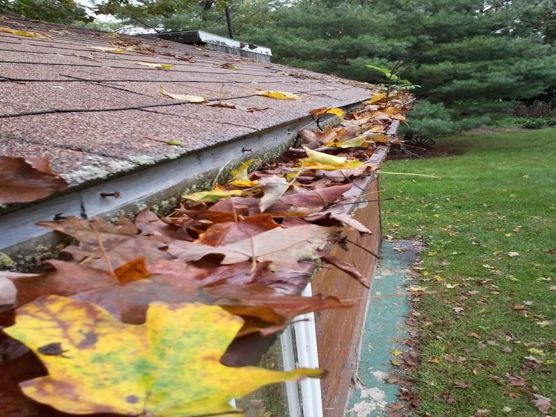 How To Clean Clogged Gutters