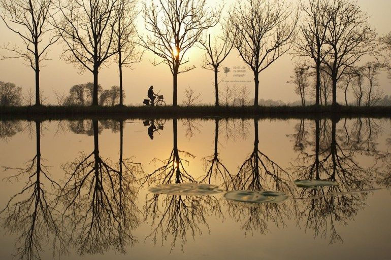 Water And Tree Reflections Nature Photography Nature Photos Line Photography