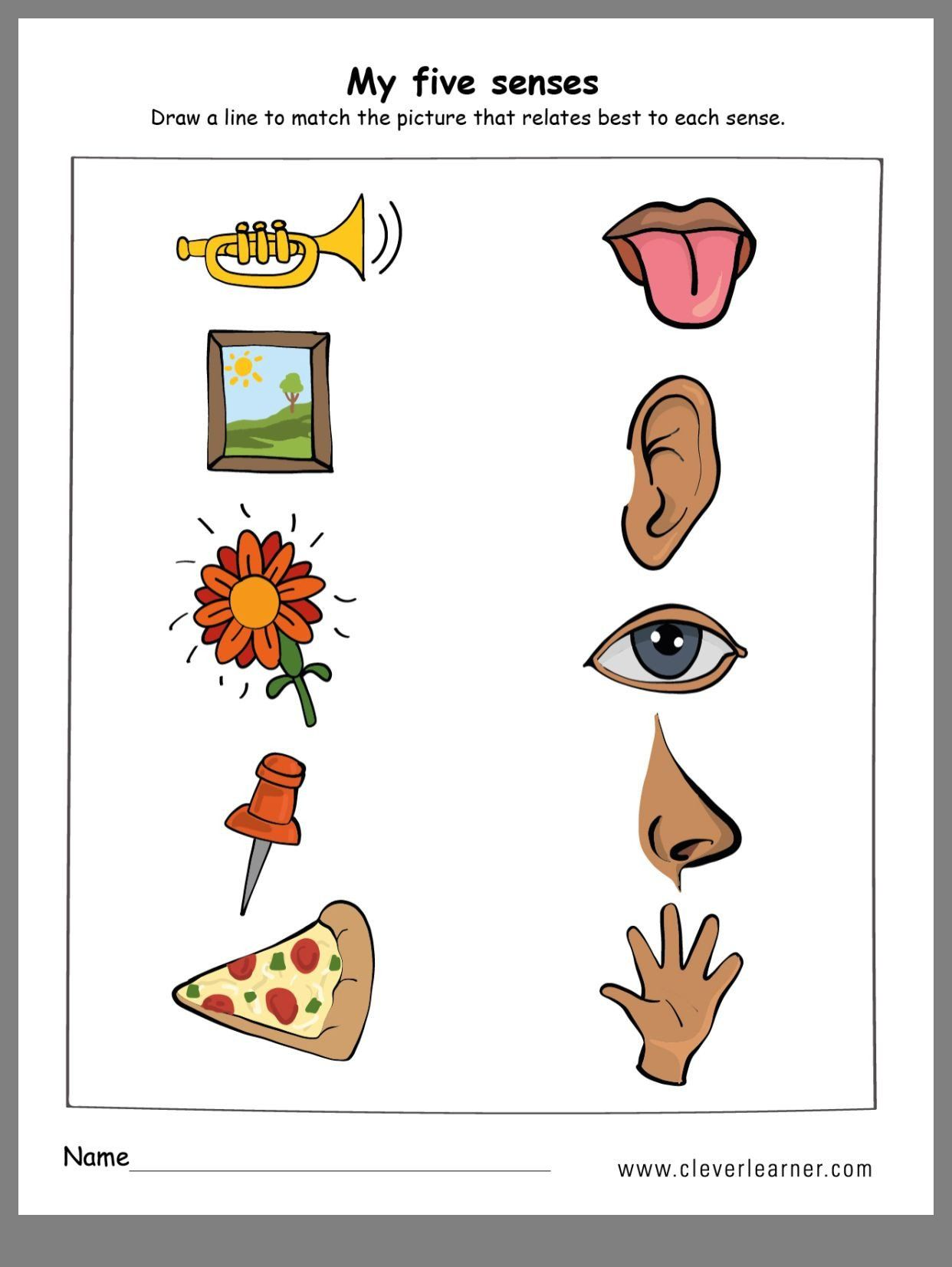 Five Senses Kindergarten Worksheet All About Me By Wenshan