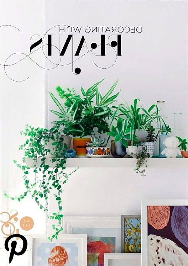 FREE Our New eMag Decorating with Plants FREE Our New eMag Decorating with Plants