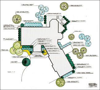 Landscape plans nursery landscape cde pinterest for Landscaping plan template