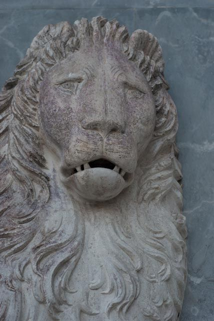 the lions of Venice make me want to reach out and touch them