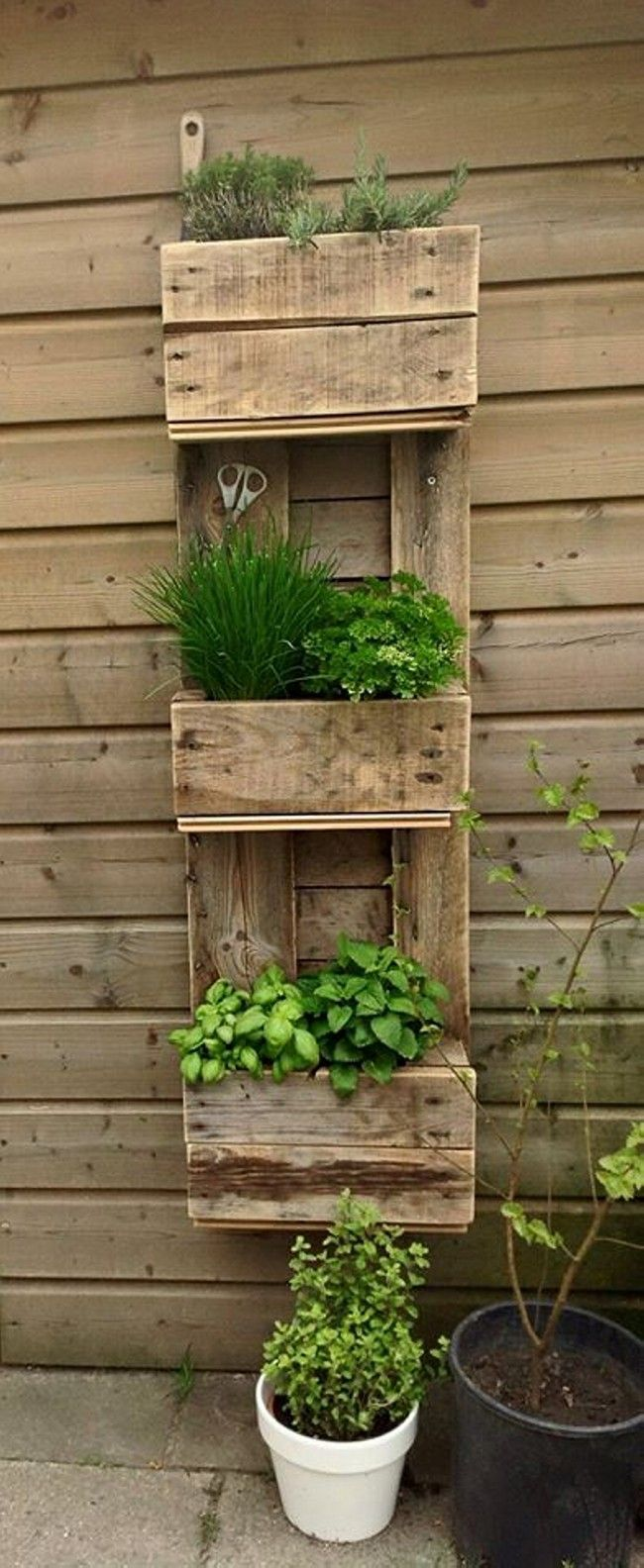 Diy pallet garden projects diy rustic pallet planter box creative - Find This Pin And More On Vertical Gardens