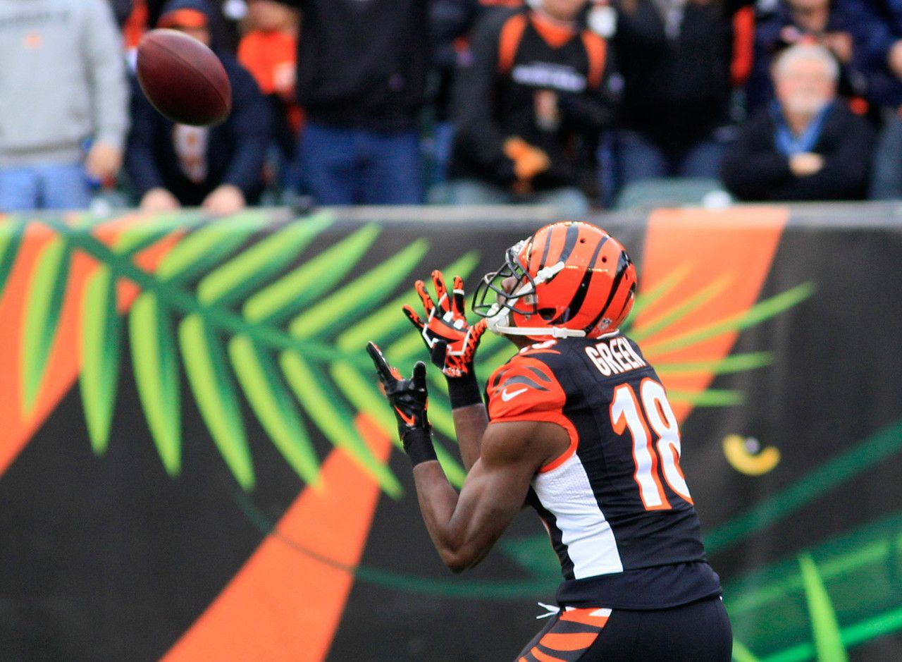 Top 12 fantasy WRs for 2014 Fantasy football, Vince